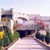 Haryana Schools